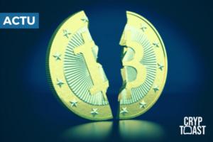 Est-il possible qu'Ethereum ou Ripple dépassent le Bitcoin?