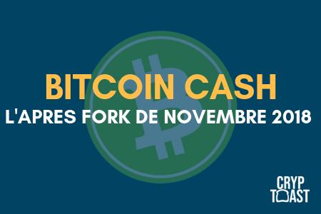 situation du bitcoin cash après le fork de novembre 2018