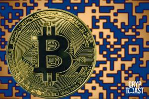Le Bitcoin dépasse à nouveau 1 million d'adresses actives à la journée