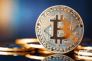 """Le marché des Bitcoins """"vierges"""" est en plein essor"""