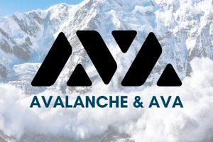 Découverte d'Avalanche et de la plateforme AVA