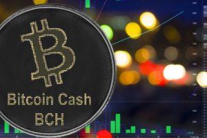 Roger Ver distribue 5 000 dollars en Bitcoin Cash à ses amis Facebook