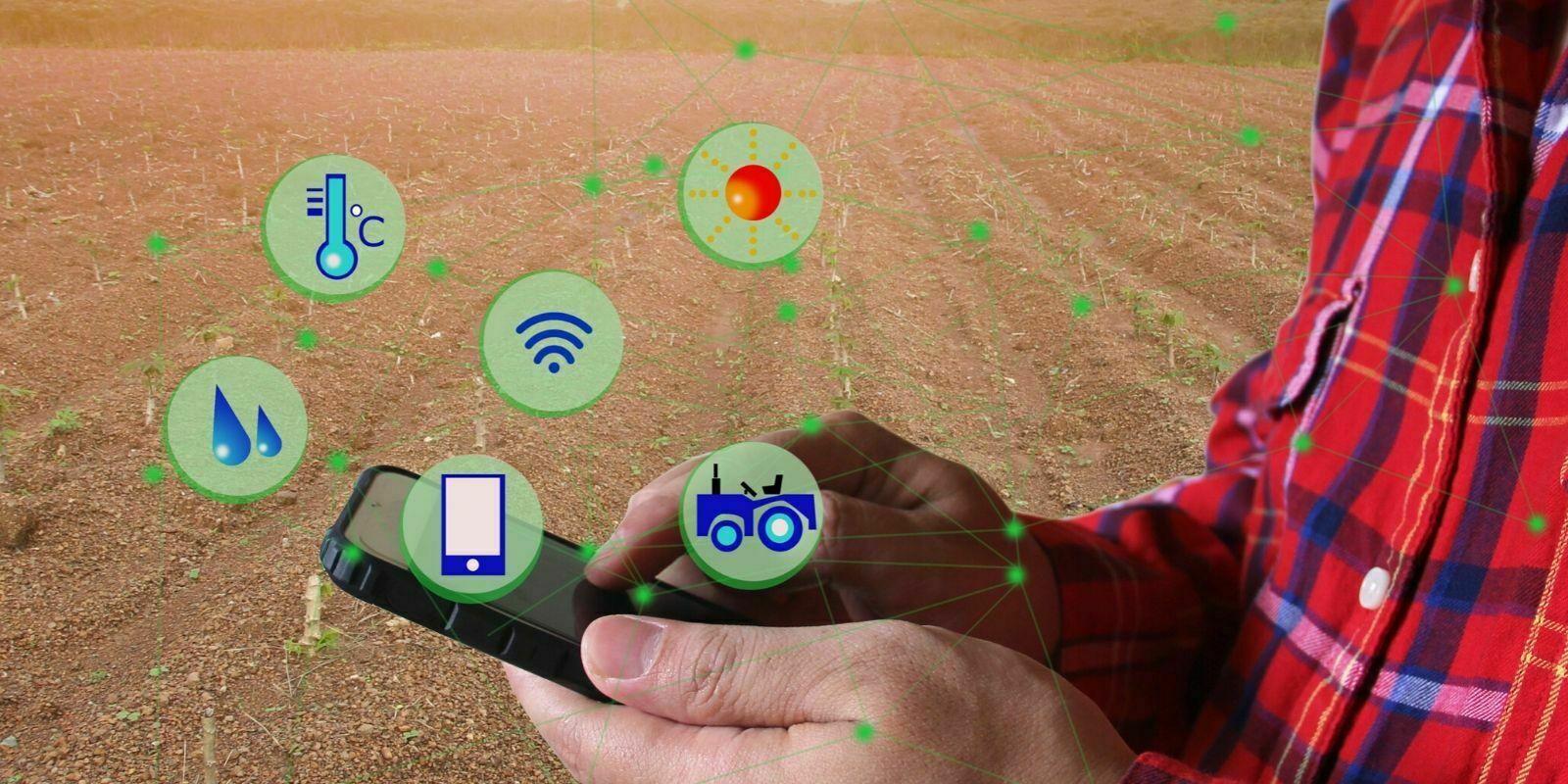 Comment la blockchain peut-elle révolutionner l'agriculture ?