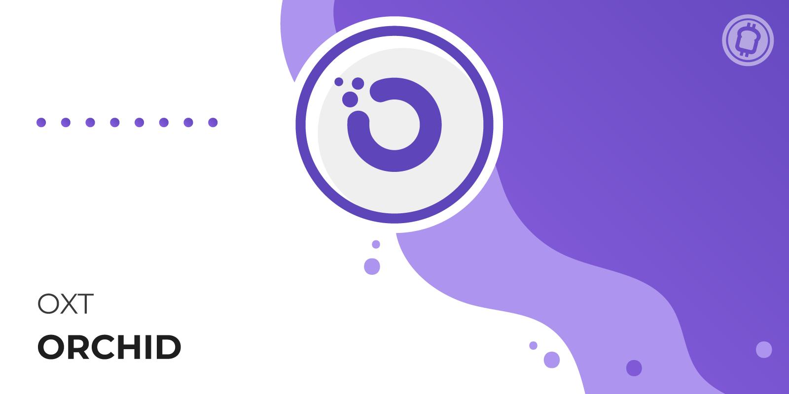 Orchid Network : le VPN open-source, décentralisé et peer-to-peer