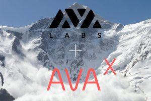 AVA Labs lance AVA-X, le programme de développement de son écosystème