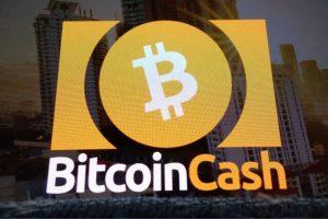 Un jour après son halving, comment va le réseau du Bitcoin Cash (BCH)?