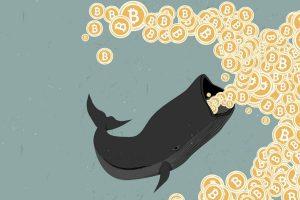 Glassnode: l'heure est à l'accumulation pour le BTC