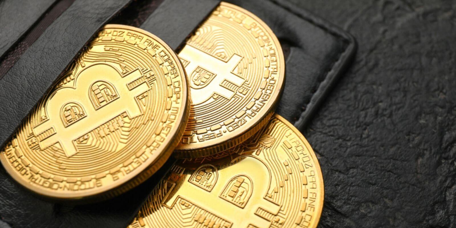Sondage: les Bitcoiners privilégient les hardware wallets