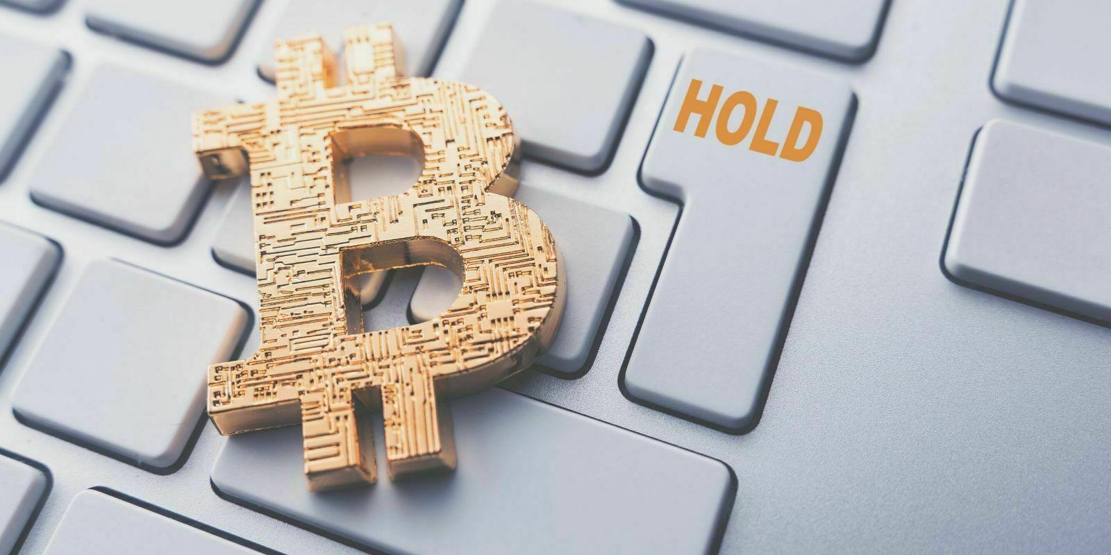 61% des bitcoins en circulation n'ont pas bougé depuis plus d'un an