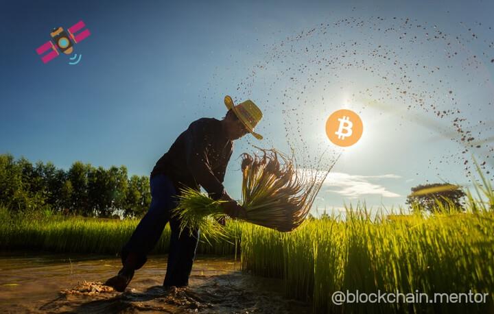 Agriculteur Bitcoin