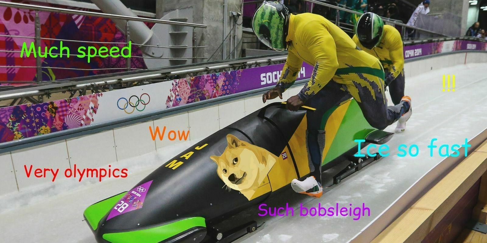 Il était une fois... le Dogecoin, la Jamaïque et le bobsleigh