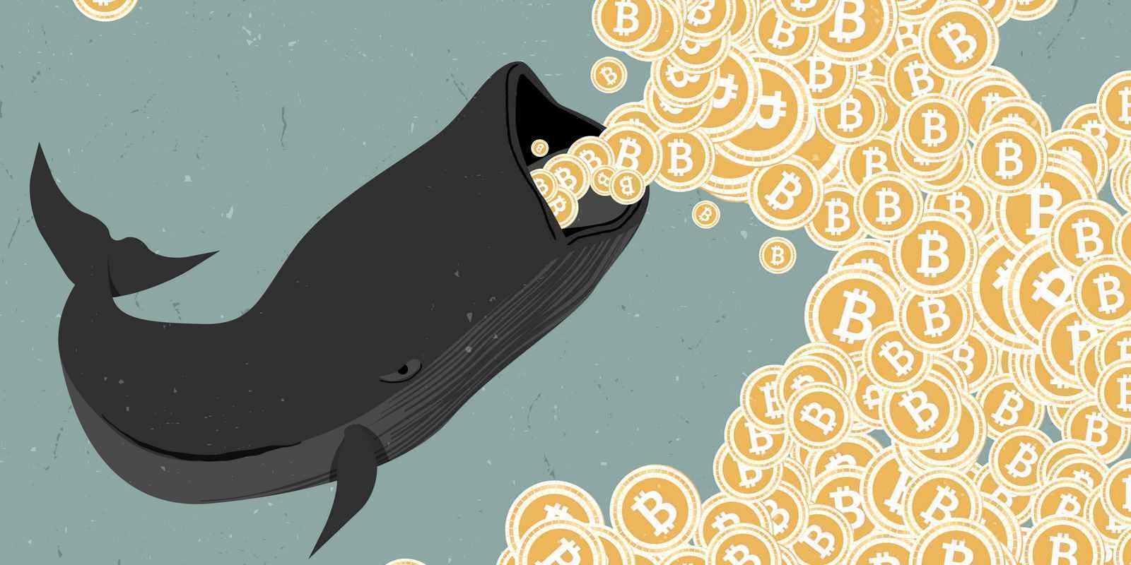 Bitcoin - deux signes que les whales sont en phase d'accumulation