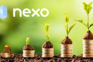 Le service de prêt Nexo va distribuer $6,1M de dividendes
