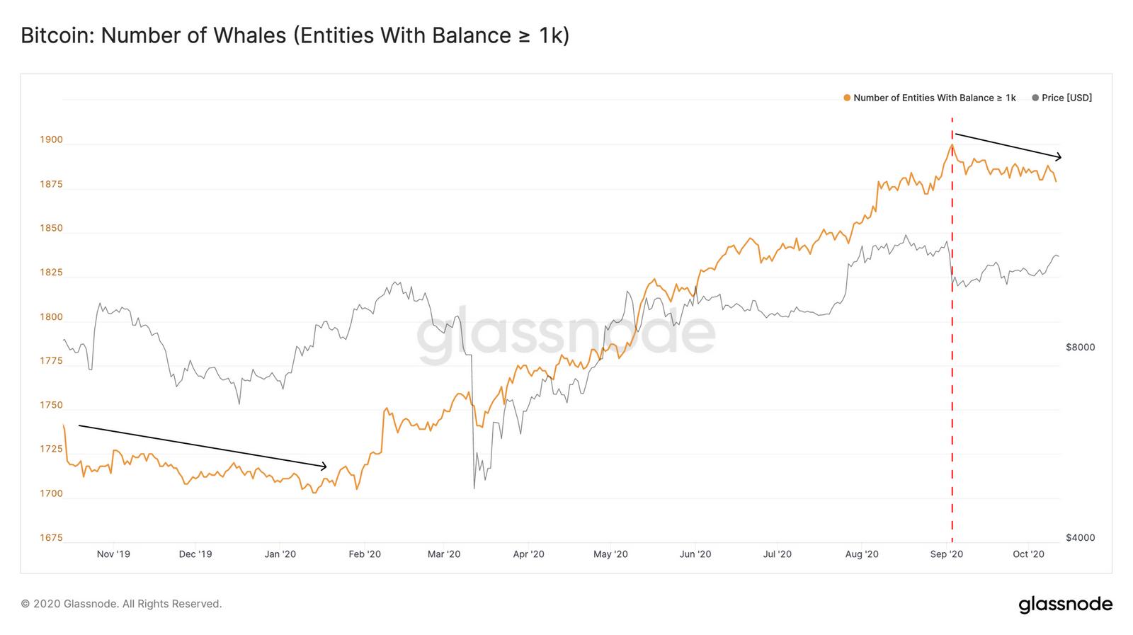 Bitcoin BTC nombre de whales