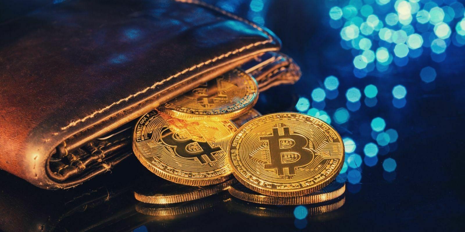 Un bitcoiner retrouve 127 BTC dans un portefeuille oublié depuis 2012 - Il empoche 4,2 millions de dollars