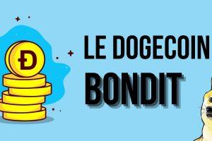 Pourquoi le Dogecoin (DOGE) a-t-il bondi de +250% en seulement 12 heures ?