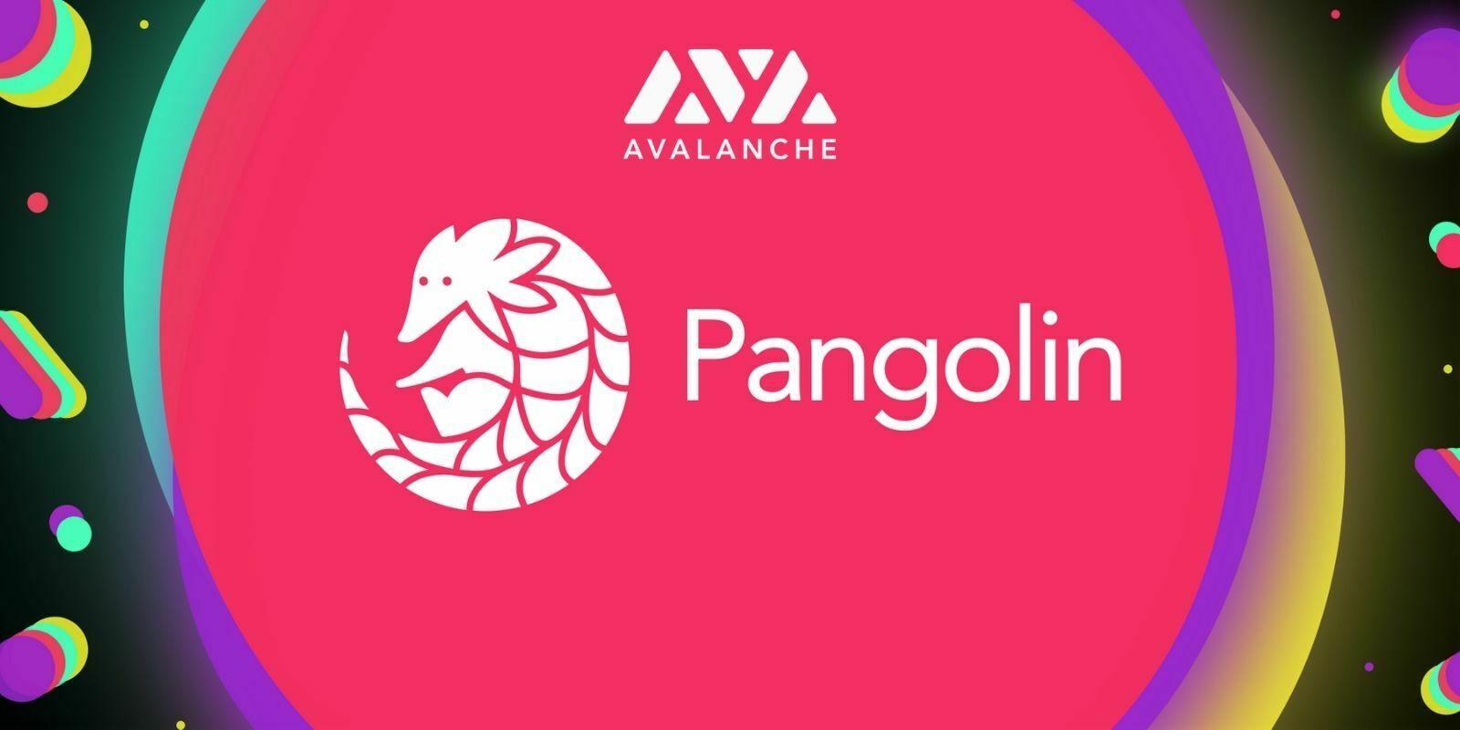 Pangolin : comment farmer des PNG sur le premier DEX d'Avalanche ?