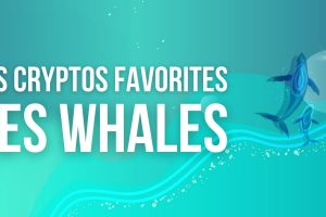 Quelles sont les cryptomonnaies les plus échangées par les «whales»?