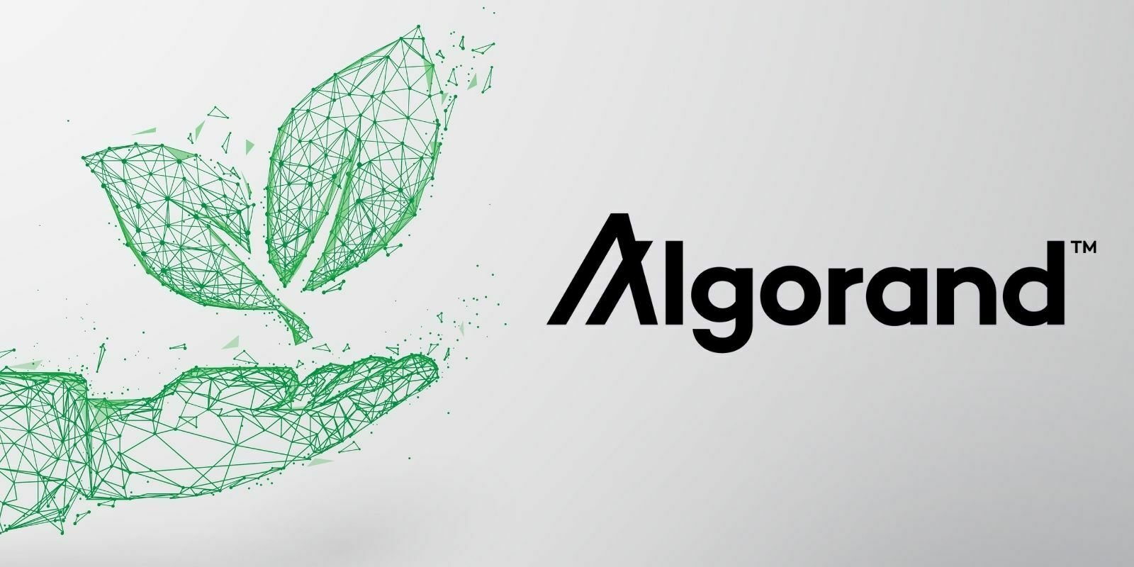 Algorand (ALGO) s'engage à devenir une blockchain neutre en carbone