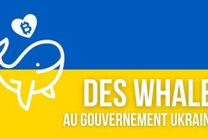 Ukraine: les employés du gouvernement détiennent 2,6 milliards de dollars en bitcoins (BTC)