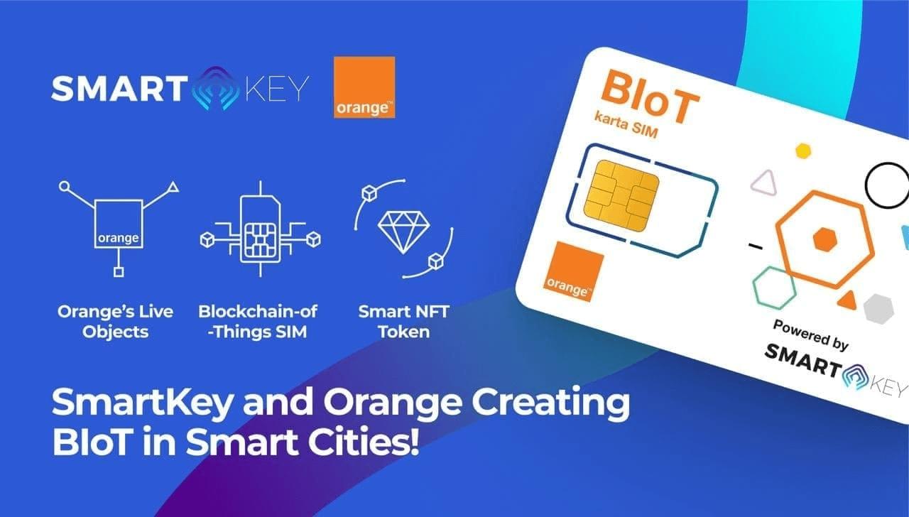 SmartKey Orange