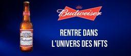 L'entreprise Budweiser achète le nom de domaine Beer.eth pour 30 Ethers (ETH)