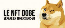 Pourquoi le NFT «Doge» vient-il d'être séparé en 17 milliards de tokens ERC-20?