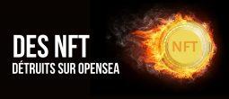 OpenSea: un bug détruit 42 NFT d'une valeur de 100 000 dollars