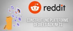 Reddit construit sa propre plateforme dédiée aux tokens non fongibles (NFTs)